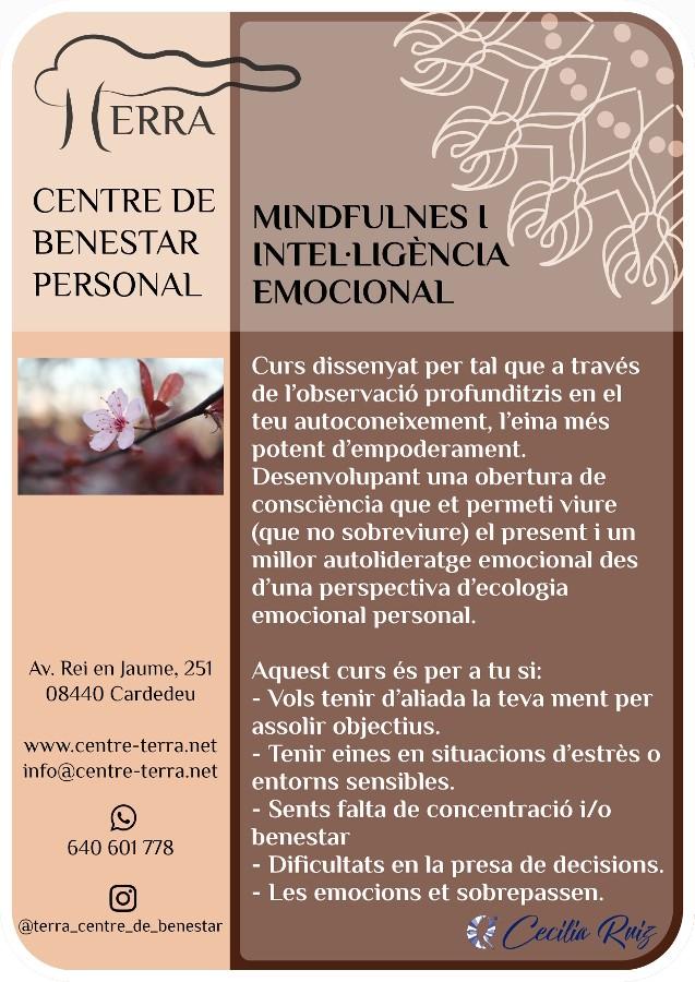 Cartell mindfulness